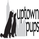 W140_uptown-pups-banner-ad