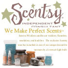 W140_scentsy