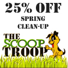 W140_thescooptroop_banner