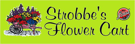 Large_strobbes-flower-cart-coupon