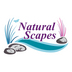 Natural Scapes Landscaping and Design - Asheville, NC