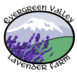 Evergreen Valley Lavender Farm - Olympia, WA