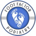 Medical - Foot Factor Podiatry - Kenosha, WI