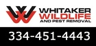 Whitaker Pest & Animal Removal Services Montgomery - Montgomery, AL