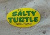 Normal_salty_turtle