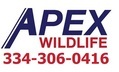 wildlife removal services - Apex Wildlife Removal - Montgomery, AL