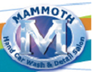 Mammoth Hand Car Wash & Detail Salon - Alpharetta, GA