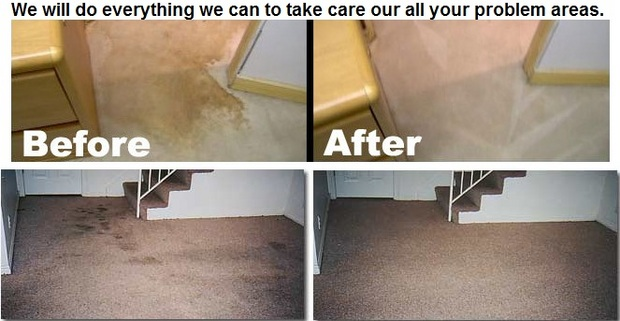 Carlos Carpet Cleaning LLC In RelyLocal