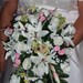 Thumb_eileen_brides_flowers