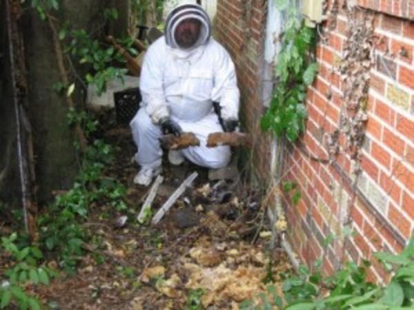 Zap Pest Control Montgomery AL in Wetumpka, AL : RelyLocal