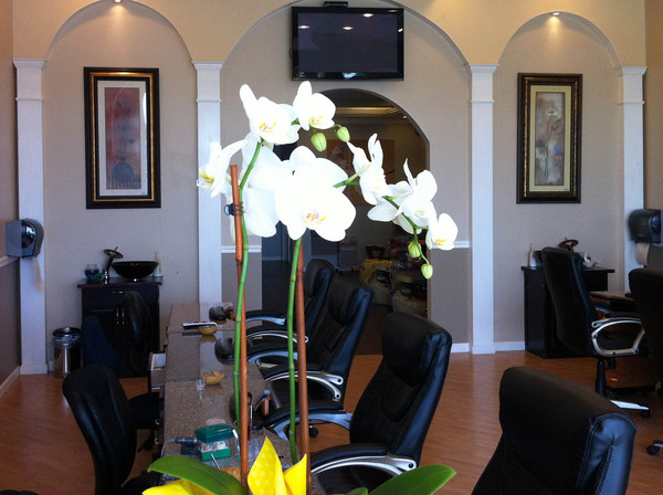 beauty nails and spa in prattville, al at High Point town Center