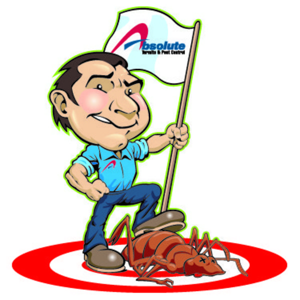 termite inspections and treatment in montgomery al